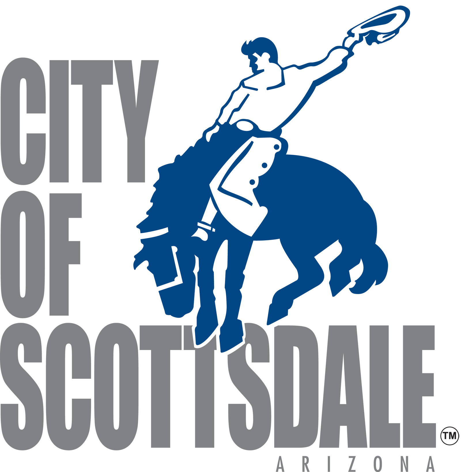 City of Scottsdale's Information Systems Department